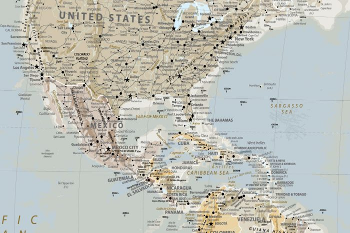 Žemėlapis ant sienos su smeigtukais tripmaker.lt
